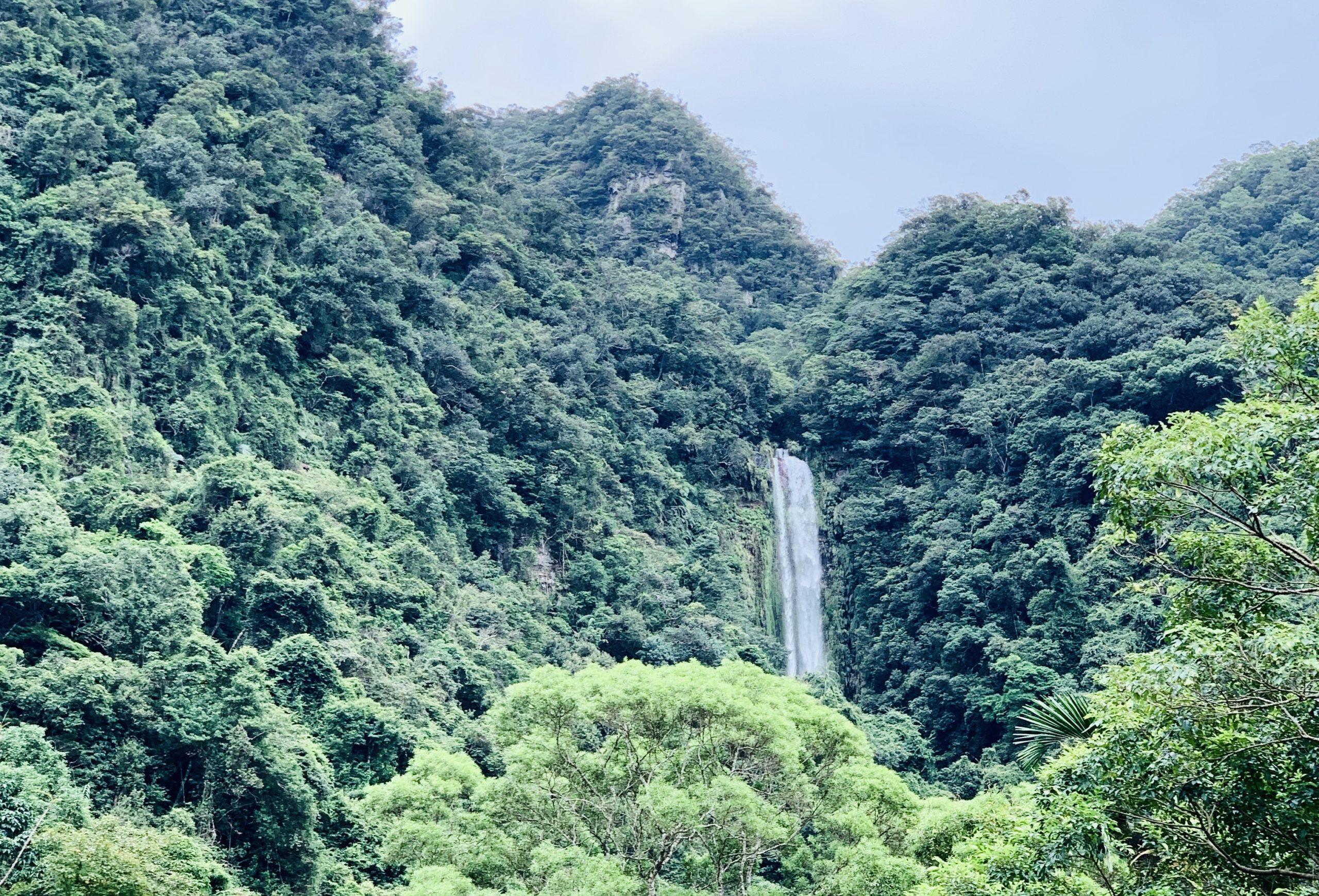 宜蘭礁溪鄉|抹茶山健行|五峰旗聖母峰 海鮮炭烤吃到飽 2日自由行